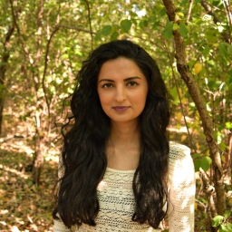 Reena Shadaan